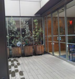 藤崎ケヤキカフェ入口